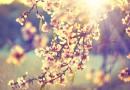 Hangolódjunk a tavaszra!